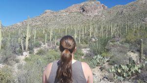 Moi en train d'admirer les cactus Saguaro sur la Pima Canyon Trail, Tucson, Arizona