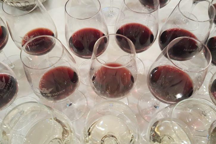 Vin bio dégustation Mark Anthony restaurant Da Vinci