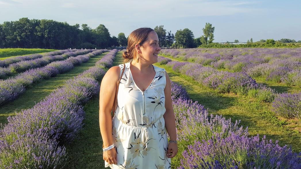 Maison Lavande, champs de lavande, Saint-Eustache, pique-nique Boho