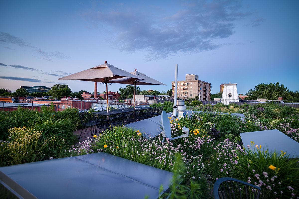 Ron Rayside, toit vert, Rayside-Labossière architectes, Montréal, bâtiment durable.