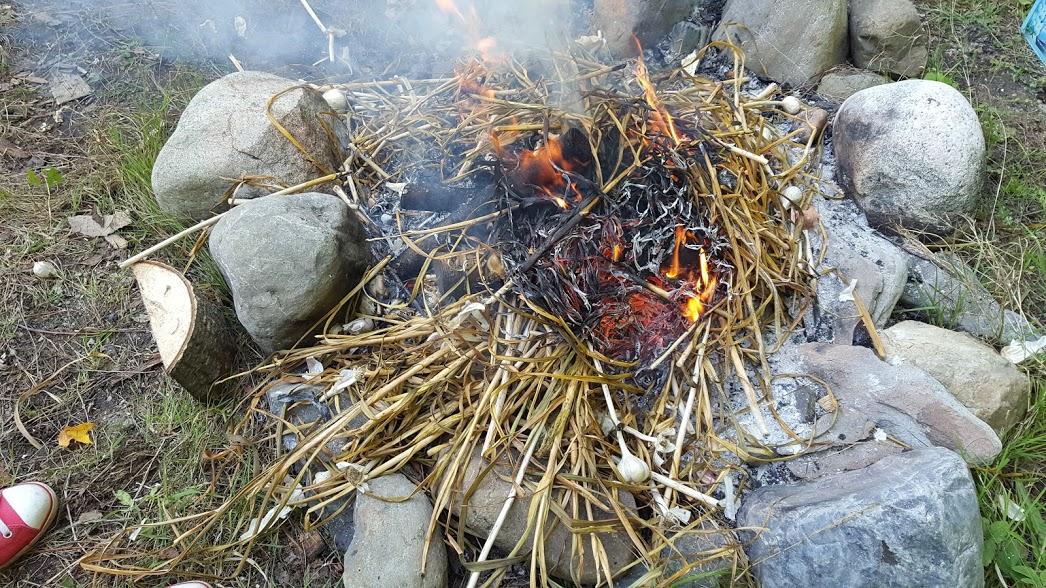 On brûle la récolte d'ail.