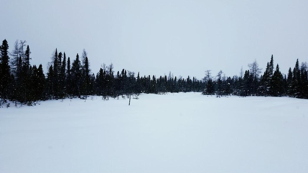 activités Kuujjuaq Nunavik