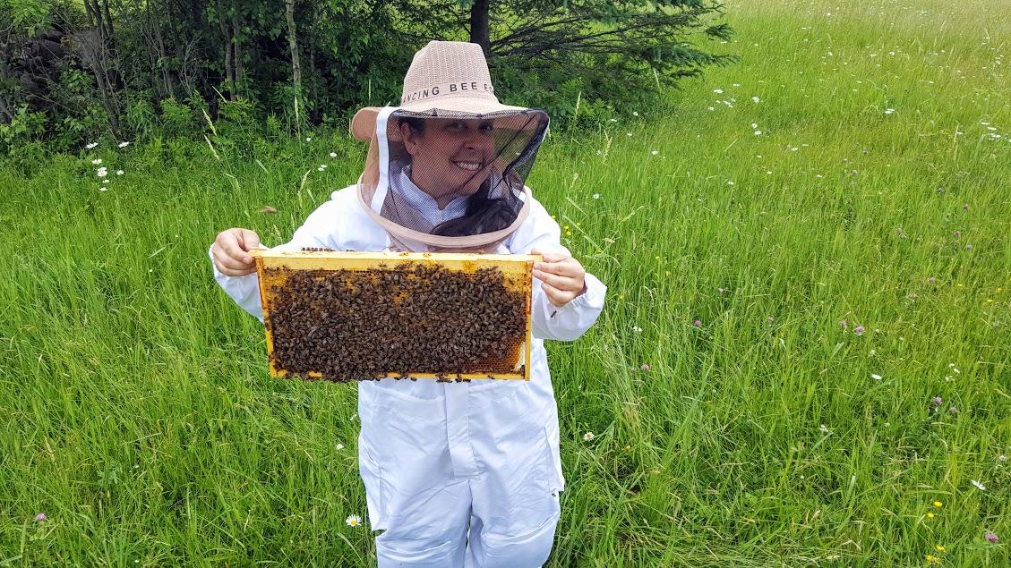 chalet écoresponsable louer Tingwick Victoriaville Quebec Apiculture, miel, Tingwick, miel de la communauté, abeilles