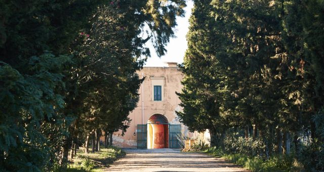CHardonnay Puglia IGT Tormaresca Antinori