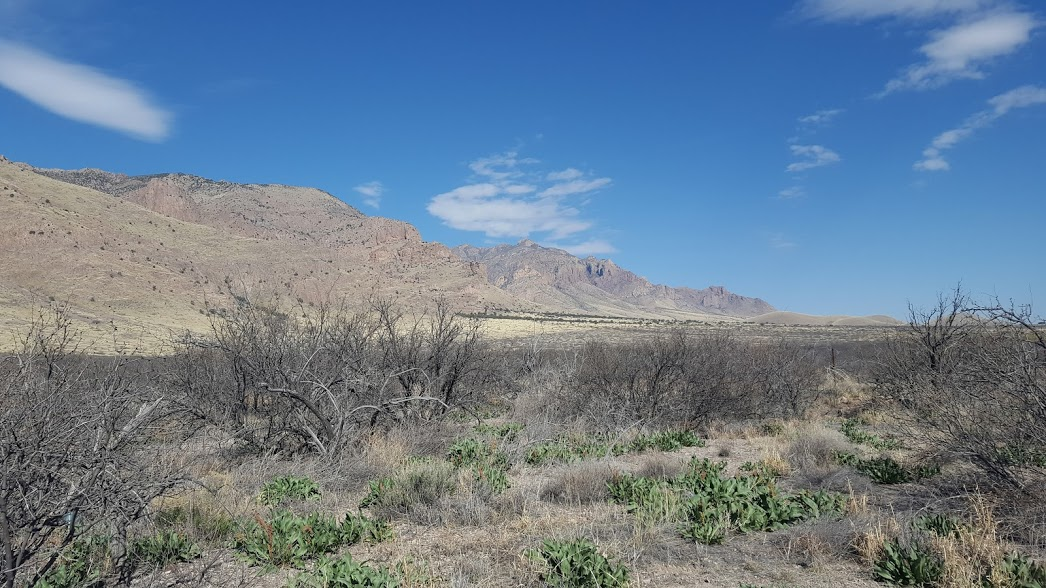 Survivalisme dans le désert du Nouveau-Mexique